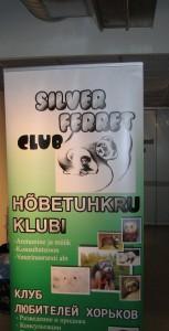 Silver ferret club 2010 03